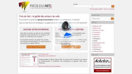 Capture d'écran Pros du net